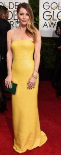 golden globes awards 2015 Leslie Mann