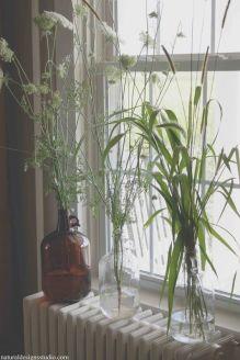 everydayfacts interior garden