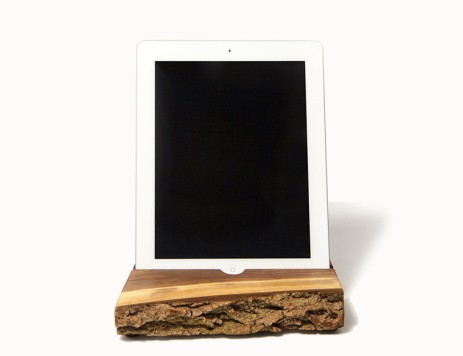 everydayfacts ipad stand