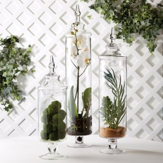 everydayfacts botanical jars