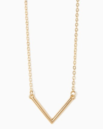 everydayfacts Charming Charlie necklace