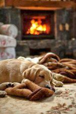 everydayfacts cozy saturday