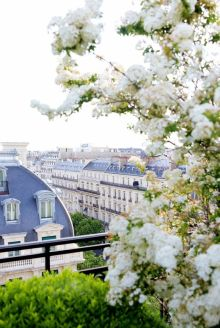 Everydayfacts Mood Spring Paris